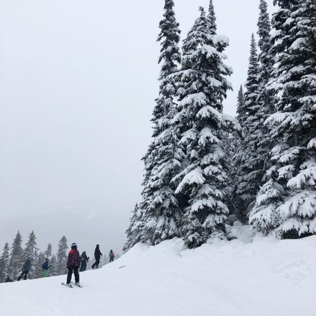 Views on Whistler Mountain