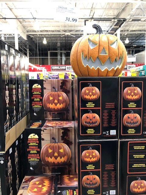 Costco Pumpkin Decoration