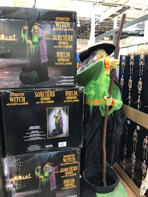 Costco Witch Decoration