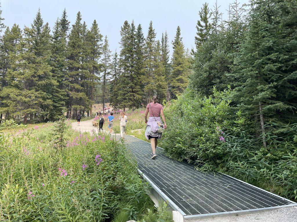Summer Lake Louise